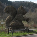 a giant squirrel