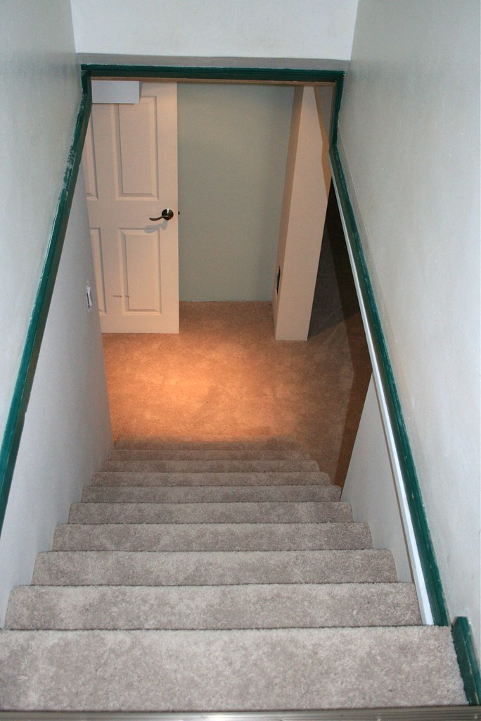 Carpet basement stairs basement stairs bass boat carpet for Best floor covering for basement