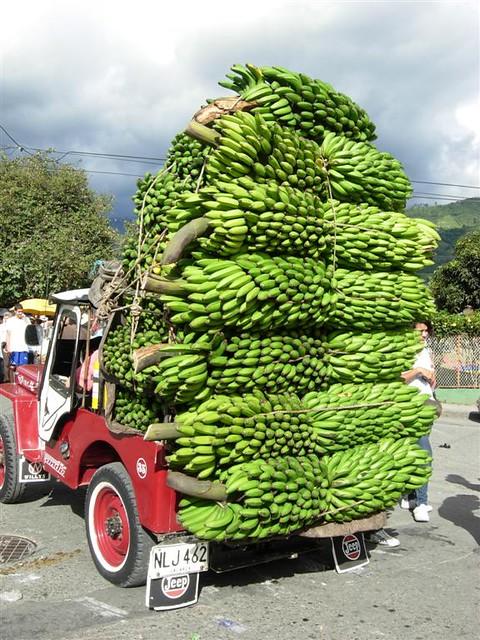 Imagen de un Jeep cargado de plátano durante el desfile