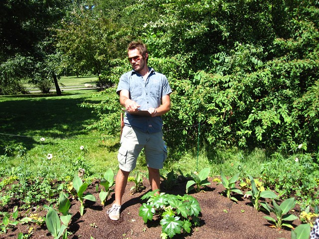 Curator Cayleb Long stands over a Ricinus communis, commonly known as castor, and canna lilies.