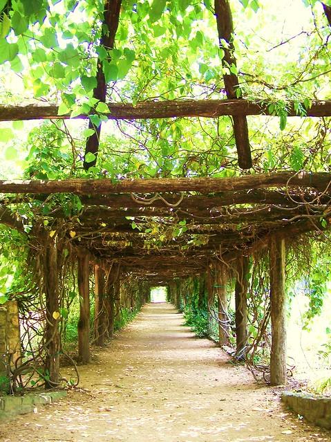 Entrance To Coker Arboretum Unc Chapel Hill Flickr Photo Sharing