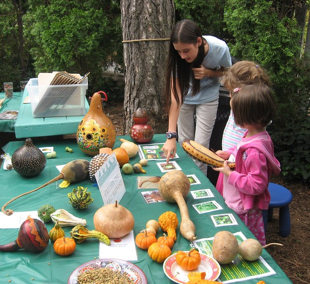 Children discover music-making gourds with a Garden apprentice at a harvest workshop. Photo by Ashley Gamell.