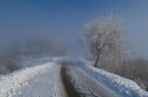 road winter snow fog landscape geotagged frost slovenia slovenija zima cesta sneg cerknicalake ivje cerkniškojezero gorenjejezero zmrzal navadnitrst