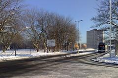 Snowy Bonsall Street