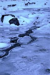 frozen beck