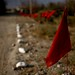 Red flags and white rocks warn villagers of the edge of a minefield in Herat Province, Afghanistan,