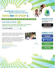 Campaign Website (Website)