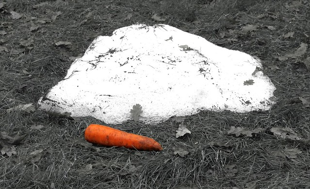 Death of a Snowman   Flickr - Photo Sharing!