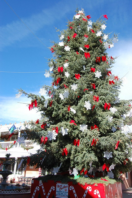 Christmas Tree in Albuquerque