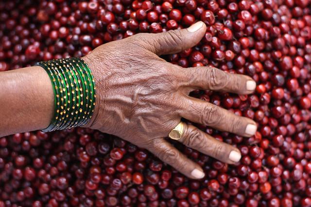 Bangles & Berries