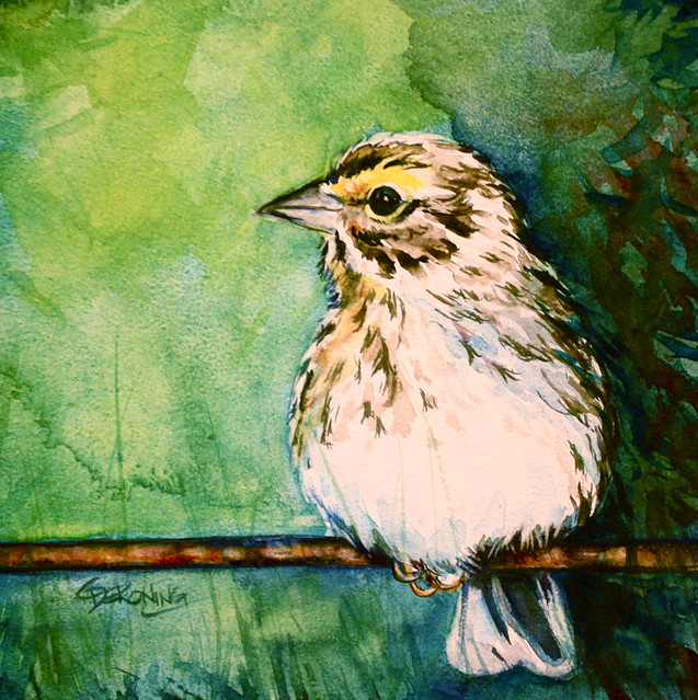 Sparrow Painting Images