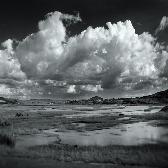 plaine humide #2 / Humid Plain #2