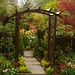 Our Genoa arch (spring) by Four Seasons Garden