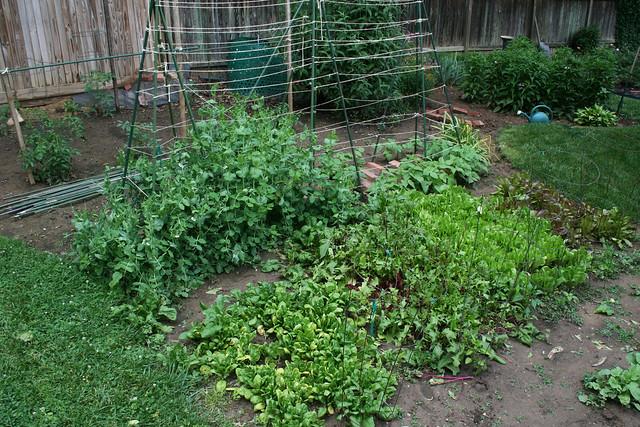 Horticulture com term