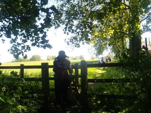 Shady gate