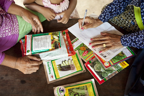 A Farm Business Advisors selling seeds to her client farmer