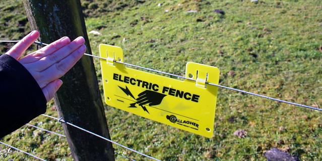Electric Fence - Lake Matheson