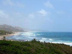 Barbados' East Coast