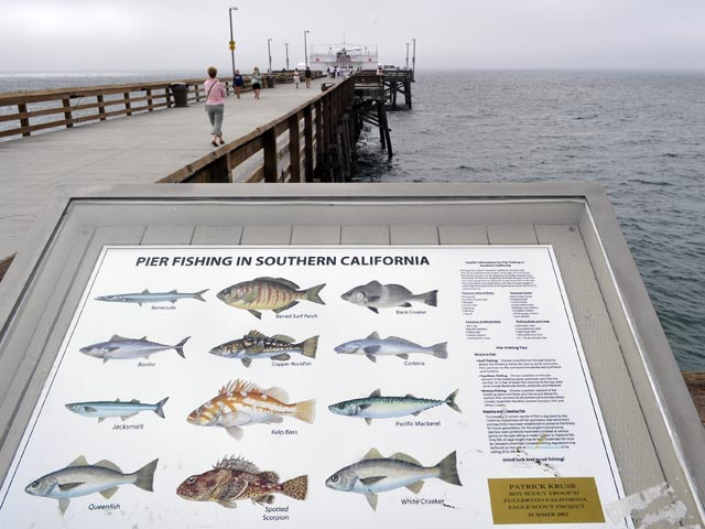 pier fishing in southern california this sign on the