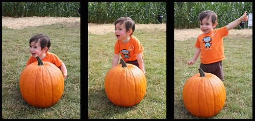 josh_pumpkin