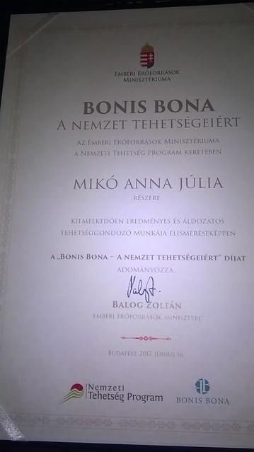 Bonis Bona - Mikó Anna Júlia