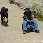 Taking the Dog for a Ride - Vilcabamba, Ecuador
