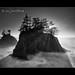 Southern Oregon Coast by Jesse Estes