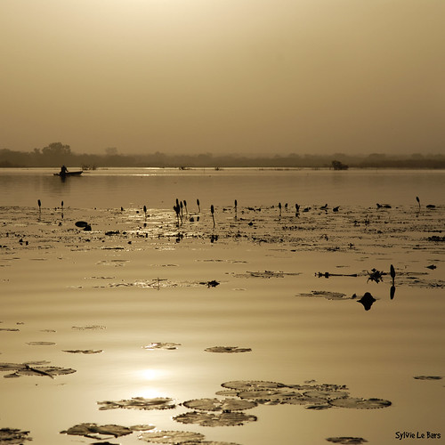 shots lumière lac burkina burkinafaso outstanding afriquedelouest carréfrançais