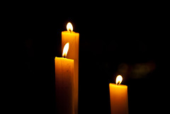 decor(0.0), flameless candle(0.0), candle(1.0), yellow(1.0), light(1.0), darkness(1.0), flame(1.0), lighting(1.0),