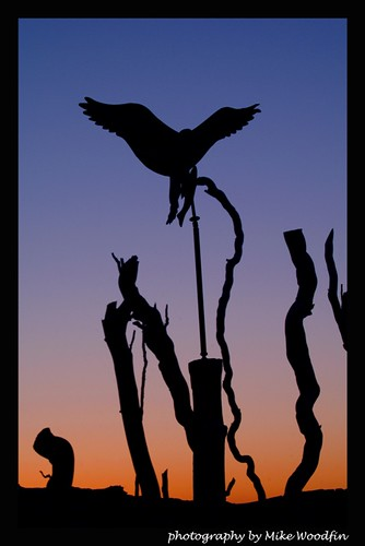 morning travel sunset usa color bird statue metal bronze night photoshop sunrise canon dark photo cool nikon gate fuji sebastian florida hawk awesome photograph fl pilings vero waterway eastcoast intracoastal anawesomeshot mikewoodfin