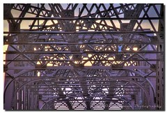 THE OLD LADY SHOWS HER TRUSSES