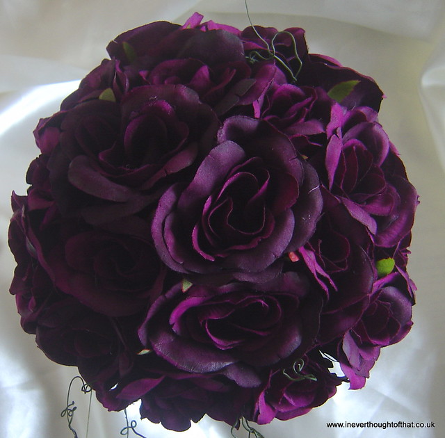 Plum Rose | Dark Brown Hairs