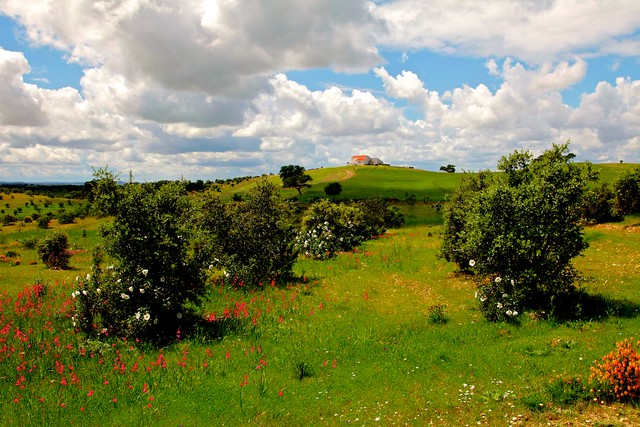Paisaje de la comarca del Andévalo