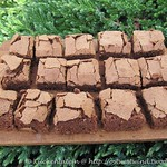 Schokoladenkuchen mit Estragon