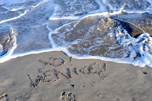 Yo Venice White Water