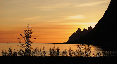 morning trees sea sky music mountains colors silhouette norway night sunrise island europe day nordic dawning scandinavia senja uriahheep flickraward absolutelystunningscapes