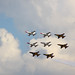 Small photo of Air Power Day 2010 738