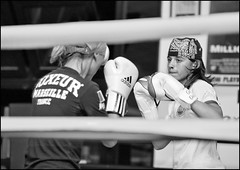Boxe femminile