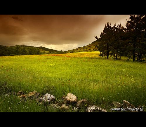 españa naturaleza nature trekking canon landscape eos spain europa europe paisaje 7d aragon senderismo teruel senderisme paisatge espanya aragón terol aragó naturalesa toniduarte canoneos7d gettyimagesspainq1 gettyimagesiberiaq2 gettyimagesiberiaq3
