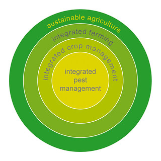 IPM is a part of Integrated Crop Management (ICM), a system which encompasses all aspects of crop management. ICM supports the appropriate integration of IPM to farming practices.