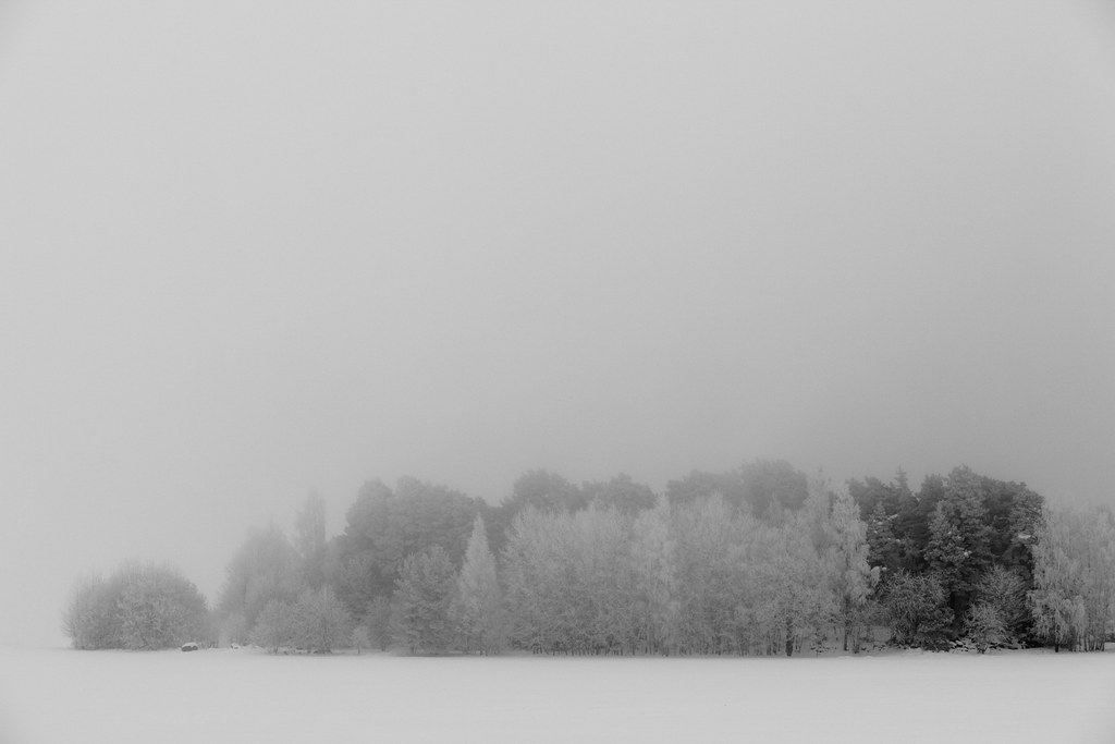 0395 Winter Mist by Ulf Bodin