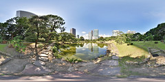 Kyu Shiba Rikyu Garden: the surface of the pond