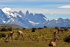 Patagonia mountain scenery
