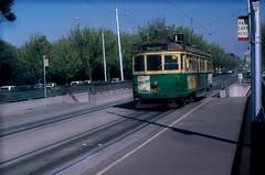 Melbourne vintage, classic trams