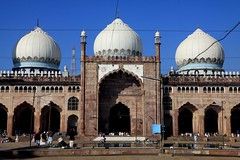 bhopal mosques taj ul masjid