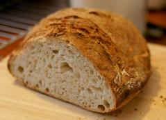 Yummy no knead bread