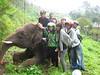 Petualang foto bareng Gajah Guci