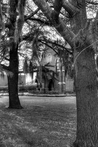 trees bw geotagged nc nikon downtown northcarolina chruch spanishmoss infrared pepsicola grounds hdr episcopal vicenç kodakhie newbern christepiscopalchurch photomatix alienskin d80 cravencounty abigfave nikond80 anawesomeshot feliú tamron18270 sabreur76 vicençfeliú geo:lon=77039798 geo:lat=35107047