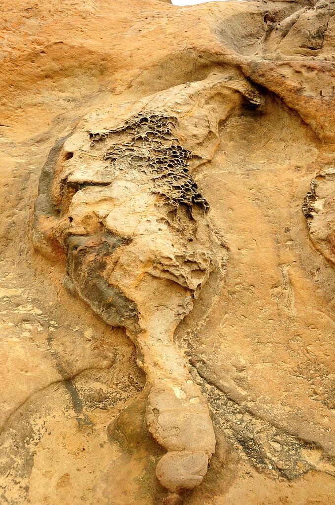 野柳‧台灣石
