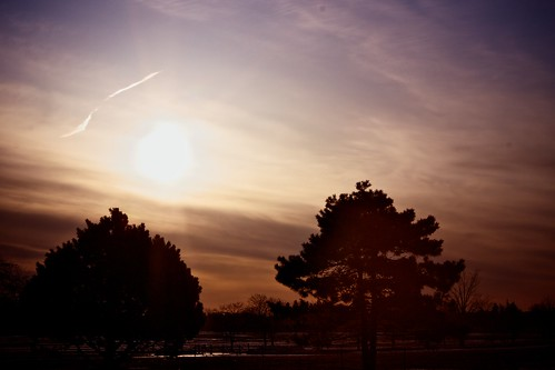 portrait sky tree sunrise landscape outdoors outdoor ottawa
